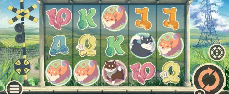 You are currently viewing เกมสล็อต Shiba Inu บนวงล้อสุดคิ้ว หวานแหวว